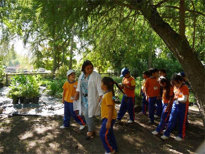 Galer a educaci n proyecto jard n bot nico chagual for Jardin botanico cursos